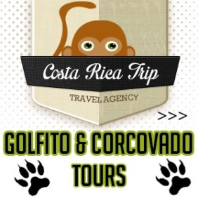 Amazing Costa Rica tours, adventure in Costa Ballena and Osa Penìnsula, #costa_rica_trip #corcovado #golfito #tours #adventure #costaballenalovers