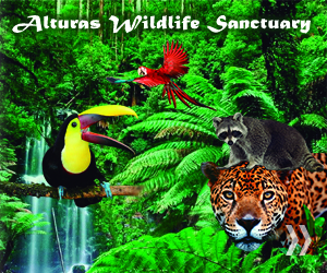 Alturas Wildlife Sanctuary Tour