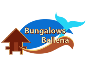 hotel in uvita bungalows ballena
