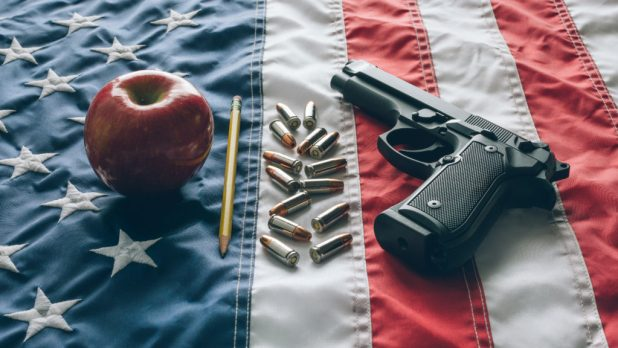 Gun for School teachers