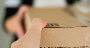 Amazon Theft RIng