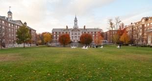 Harvard Freshman