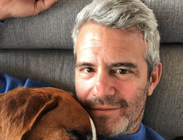 Andy COhen Gets A show