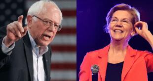 Bernie vs Elizabeth Warren