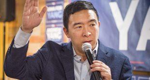 ANdrew Yang for CNN