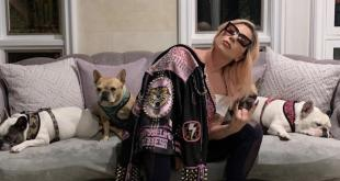Lady Gaga and her dogs.