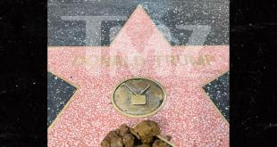 trump hollywood star covered in dog poop
