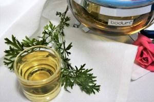 Der Einjährige Beifuß-Artemisia annua-Rezept