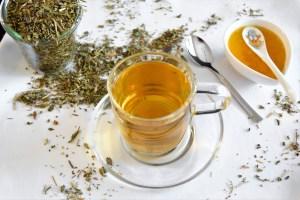 Tee von der Gundelrebe