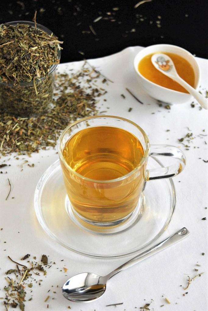 Tee von der Gundelrebe-Gesund-ballesworld