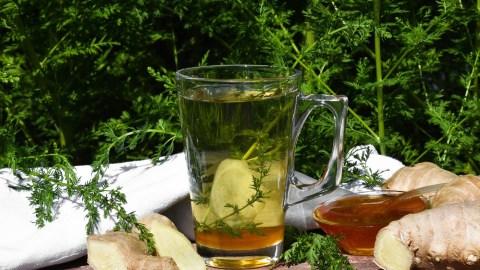 Beifuß-Ingwer-Honig Tee-Anrichten-ballesworld