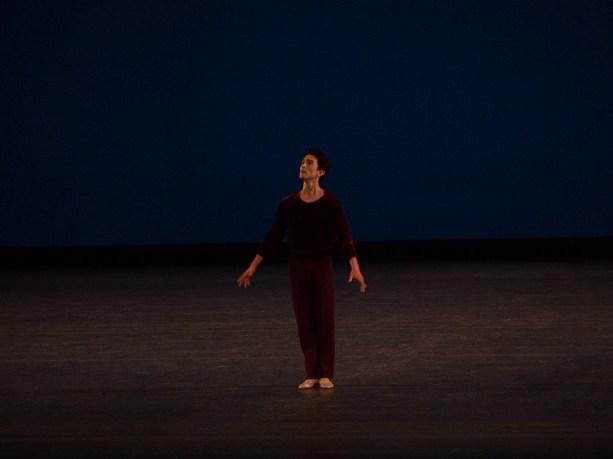 A Suite of Dances - Antony Huxley