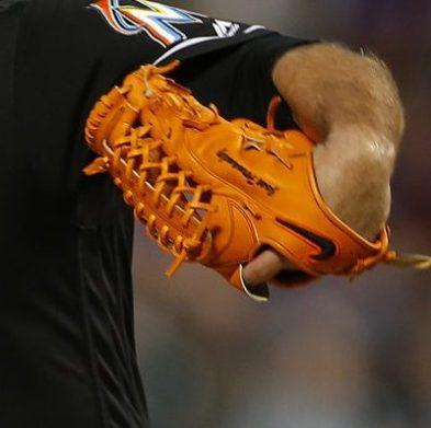 Jose Fernandez' Glove