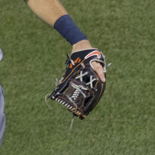 Ian Kinsler's Glove: Custom Nike Shado