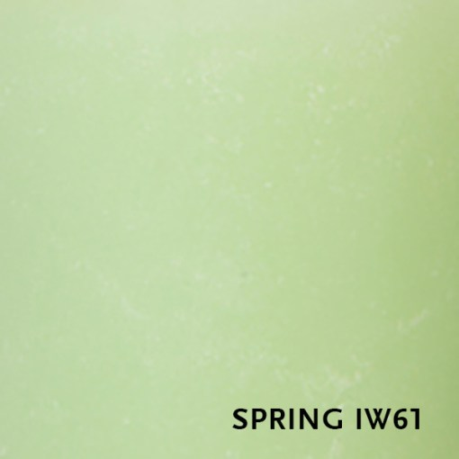 IW61-spring