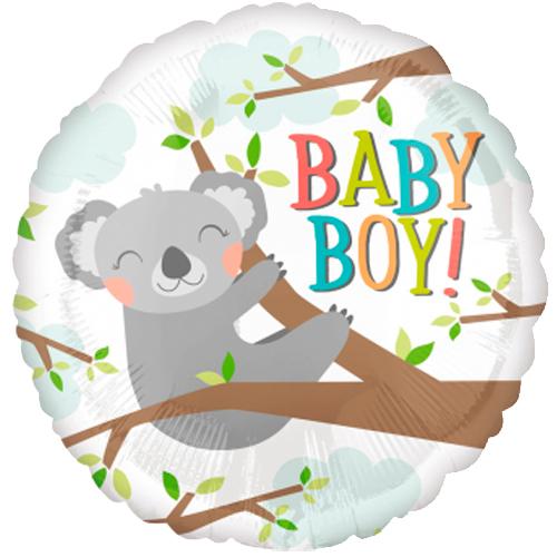Baby Koala Boy