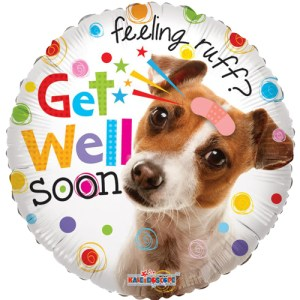 Get well Doggy