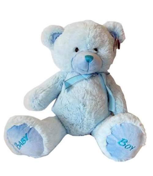 Γαλάζιο λούτρινο Αρκουδάκι baby boy