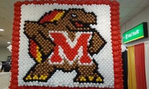 Maryland University Mascot Balloon Wall, by Balloonopolis, Columbia, SC