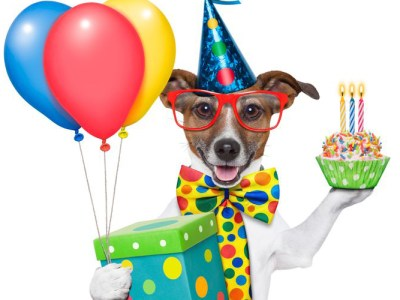Any Party Balloons for delivery or pickup from Balloon Shop NYC