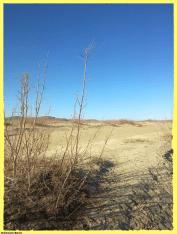 Sharod-Sharud-Ballochistan-North2