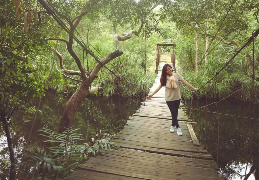 Cầu dây giữa rừng