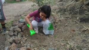 Seeds Plantation on Hanuman Tekadi - 2