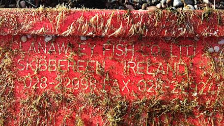 5clanawley-fish-co-ltdskibbereen-ireland