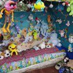 Раскрыт секрет палатки с игрушками на шоссе Биксти-Ауце