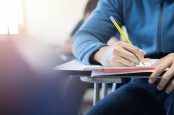 Венецианская комиссия: пропорции языков в школах нацменьшинств адекватны