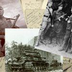 Поисковики нашли захоронение жертв фашизма в Псковской области