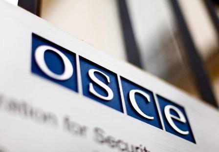 Россия сообщила ОБСЕ о дискриминации русскоязычных жителей в европейских странах