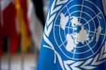Россия поддержала резолюцию СБ ООН о борьбе с коронавирусом