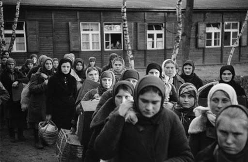 Запущен сайт о преступлениях нацистов в Псковской области