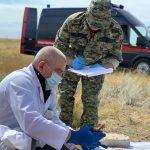 Следователи нашли под Волгоградом останки мирных жителей, расстрелянных фашистами