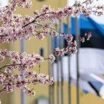 Стратегия «Эстония 2035» ждет последних дополнений