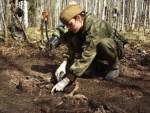 Поисковики в Ставрополье обнаружили место массового убийства гитлеровцами мирного населения