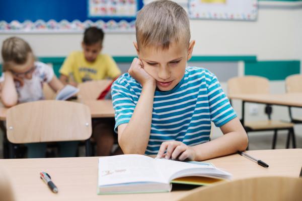 Официально: российских школ в Латвии не будет. И китайских тоже