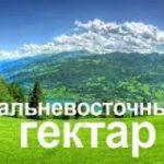 Пять тысяч человек отчитались об освоении «дальневосточного гектара»