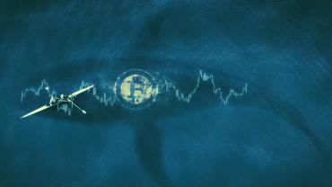 Glassnode: количество владеющих биткоином «китов» растет