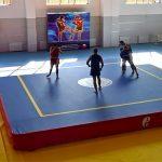 """Международный центр самбо и бокса в """"Лужниках"""" начнут строить до конца года"""