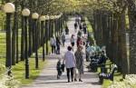 В Эстонии подтвержден 21 новый случай заражения коронавирусом