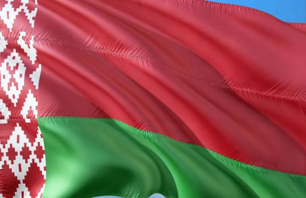 Выборы президента Беларуси: где проголосовать в Эстонии