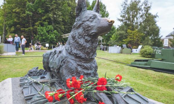В конкурсе «Портрет фронтовой собаки» приняли участие дети из стран Европы и Азии