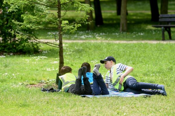 Лето продолжается: в среду солнечно и без осадков