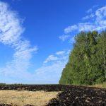 Обладатели дальневосточных гектаров получат дополнительную землю