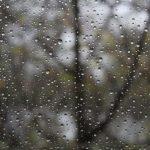 Прогноз погоды в Эстонии на понедельник