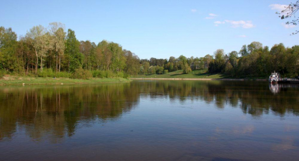 Загрязнение Немана в Литве удалось остановить в рекордно короткие сроки