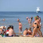 Запущен сбор подписей за разрешение выгуливать собак на пляжах в Юрмале