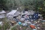 Все изгажено! Юрмальские леса превращаются в свалку отходов (+ФОТО)